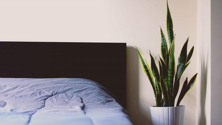 Na co patrzeć przy wyborze łóżka do sypialni?
